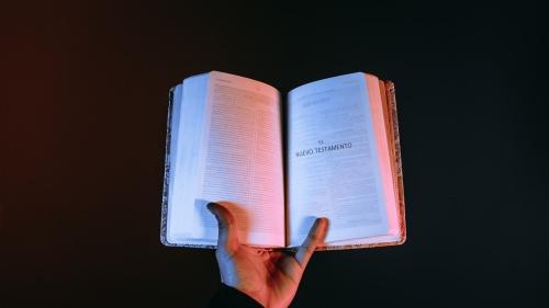A pesar de que Pablo no es el principal contribuyente de los escritos del Nuevo Testamento, probablemente sea el más citado. A veces parece que la mayoría de las citas bíblicas usadas en el sermón cristiano promedio, provienen de los escritos de Pablo.