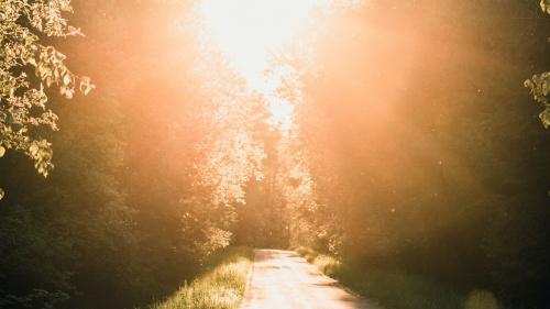 Debemos entender que el llamamiento de Saulo al ministerio de la predicación del evangelio fue un cambio como de la noche a pleno día; como sacado del reino de las tinieblas al reino de la luz celestial.