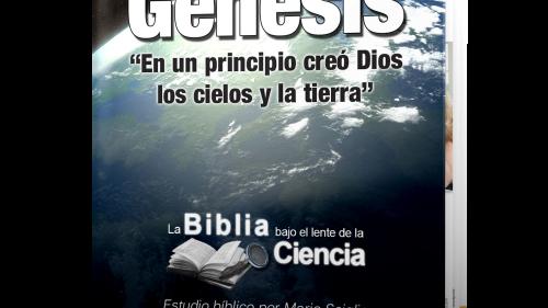 Genesis Bajo el Lente