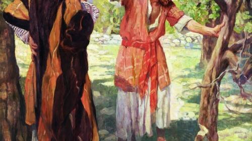 La higuera: Una lección sobre la paciencia y el juicio de Dios