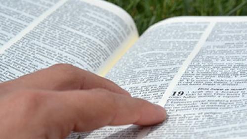 La importancia del estudio bíblico