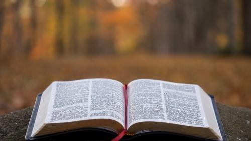 ¿Habla usted con la verdad en sus conversaciones y enseñanzas?