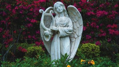 Muchas personas asumen demasiadas cosas acerca del reino angélico. Basan sus creencias en lo que han escuchado o simplemente imaginan que es correcto.