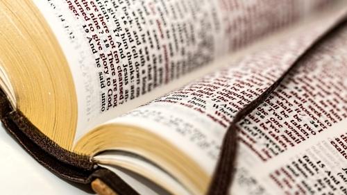 La Iglesia tiene la responsabilidad de anunciar la venida de Cristo.