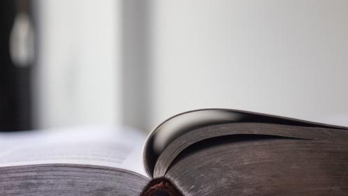 ¿Qué significa que Jesucristo es un Rey?
