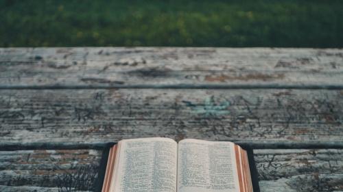Acusar a la Biblia -o a Dios- de promover el racismo, se basa en una suposición errónea de que Dios piensa como nosotros, así como en un malentendido de lo que significa la elección de Dios.