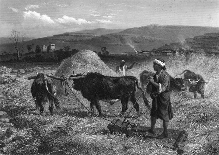 Muchos de los hombres de Dios fueron agricultores humildes, pero diligentes.