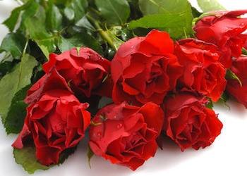¿Qué tiene de malo mostrar amor en el Día de San Valentín?