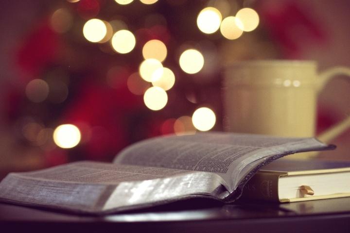 Así que su búsqueda lo ha traído aquí: Encontrando la verdad sobre la Navidad