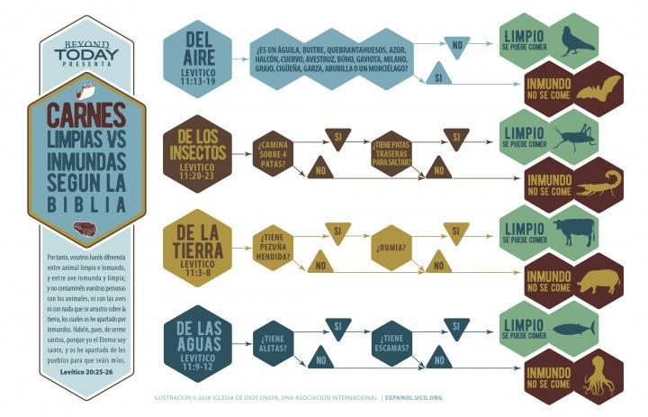 Infografía: Alimentos limpios e inmundos según la Biblia