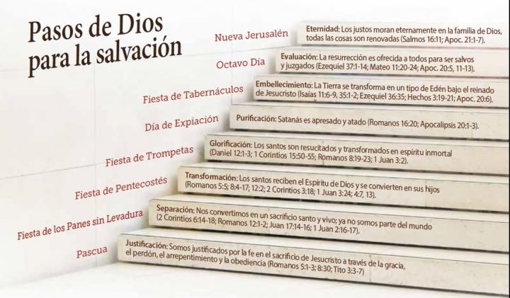 Pasos de Dios para la salvación