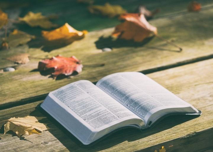 A través de toda la Biblia, la violencia sexual, incluídos la violación, el asalto y el acoso tanto a hombres como a mujeres, está proscrita y condenada. Nuestro amoroso Padre nos traerá un reino futuro libre de estos actos malignos.
