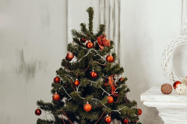 El árbol navideño viene del paganismo