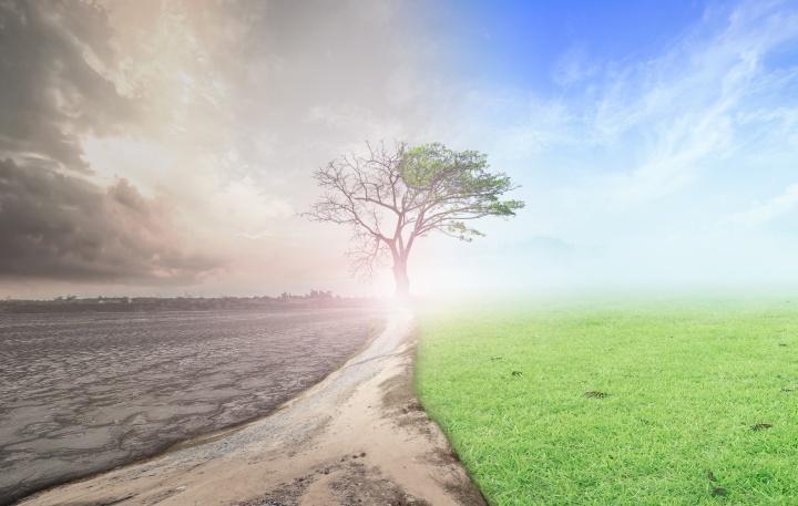 ¡El reinicio de Dios traerá la abolición de la guerra! Sin embargo, esta paz mundial duradera es solo el comienzo de la maravillosa historia.